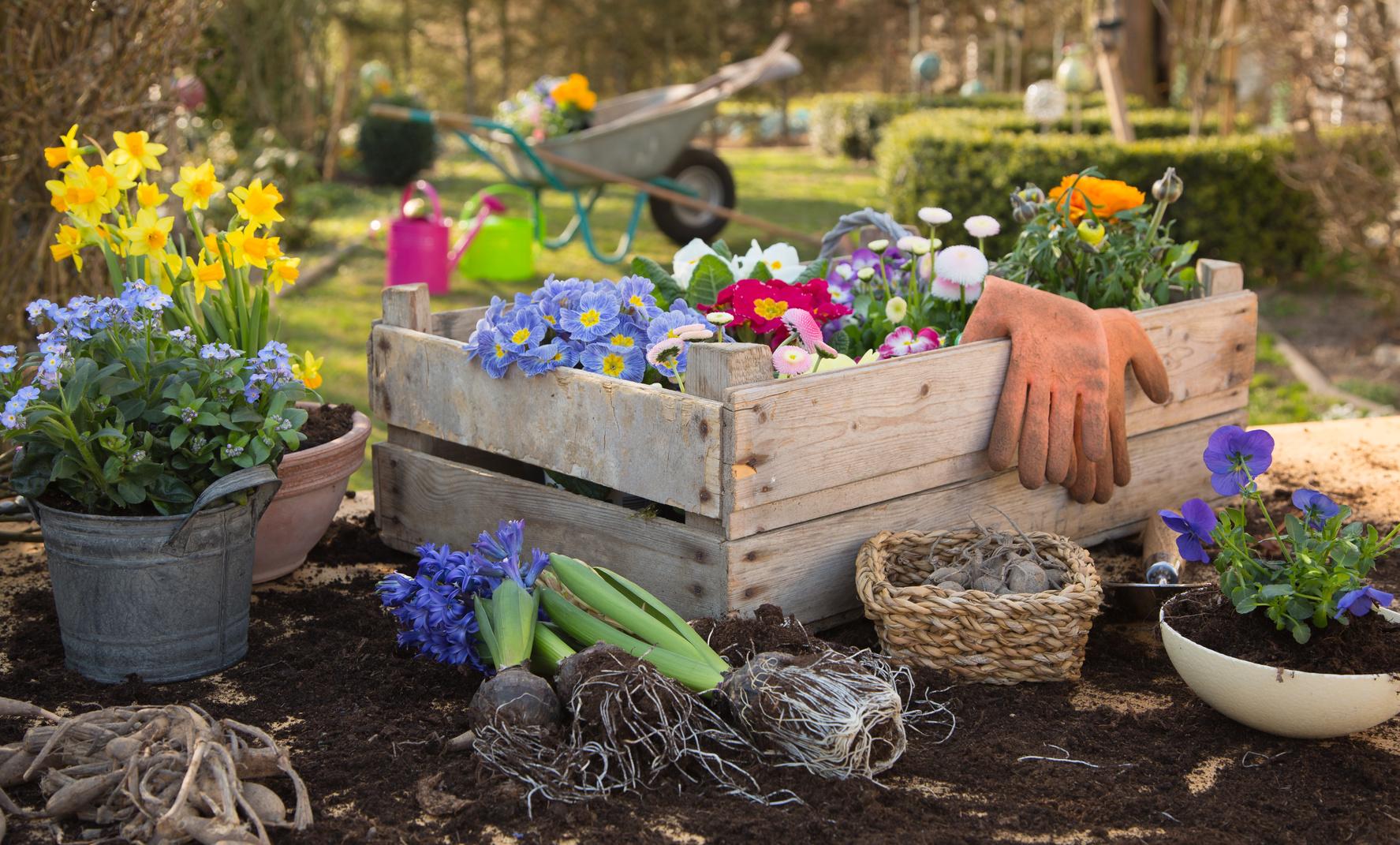Deko fuer den Garten: Einfaches aber dekoratives aus Holz